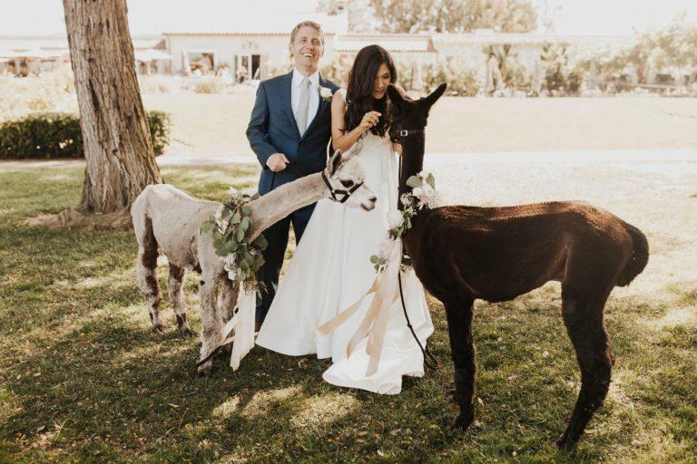 Elegant Wedding at the Inn at Rancho Santa Fe